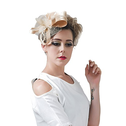 BAOBAO Women Wedding Cocktail Party Fascinator Feather Net Veils Hair Clip Derby Hat