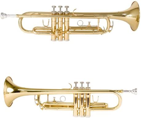 Mendini by Cecilio Gold Trumpet Brass Standard Bb Trumpet, Student Beginner with Hard Case
