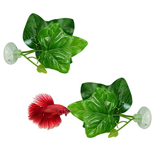 CousDUoBe 2 Pack Betta Fish Leaf Pad - Improves Bettas Health by Simulating The Natural Habitat( Double Leaf Design, one Big and one Small )