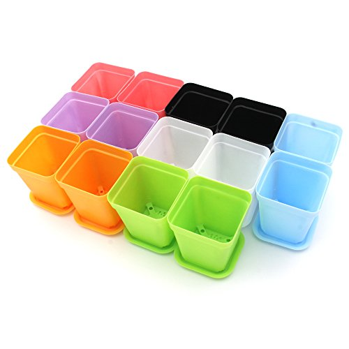 KLOUD City 14pcs Colorful Square Plastic Plant Pot, Planter, Flower Pot Pallet Tray Saucer Decoration Home Office Desk Garden Flower Shop