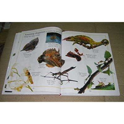 My First Animal Book Vietnamese/English Picture Dictionary - 8.5