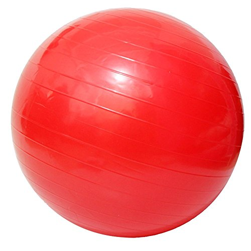 Acefit Anti-burst-and-slip Resistant Fitness Balance Exercise and Stability Ball with Pump Yoga Ball