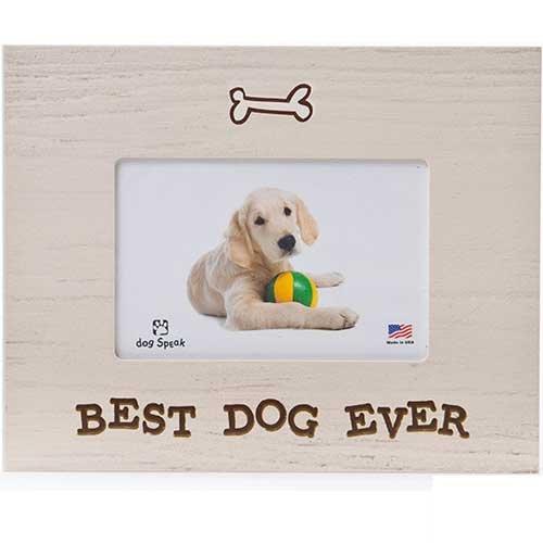 Dog Frame Review