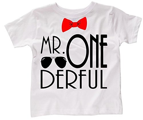 Applecopter First Birthday Smash Cake Outfit Mr ONEderful Shirt Boy Boys 1st Photo Shoot Unisex Fit Christmas Presents
