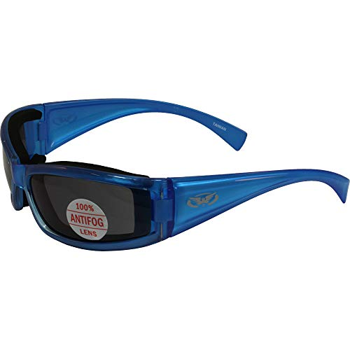 Stray Cat Padded Motorcycle Riding Sunglasses Translucent Blue Frame Anti-fog Smoke Lens