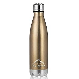 Cola Bottle Vacuum Insulated Double Wall Stainless Steel Leak-proof Cola Shape Sports Water Bottle Keeps Your Drink Hot & Cold 17oz/500ml (Champagne)