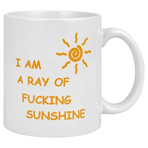 I'm A Ray Of Fucking Sunshine White Ceramic Glossy Coffee Mug Funny Coffee Tea Cup ()