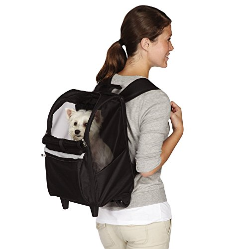 East Side Collection On-the-Go Rolling Backpacks — Convenient and Versatile Carriers for Small Dogs and Cats, Black (East Collection Carrier Side Pet)
