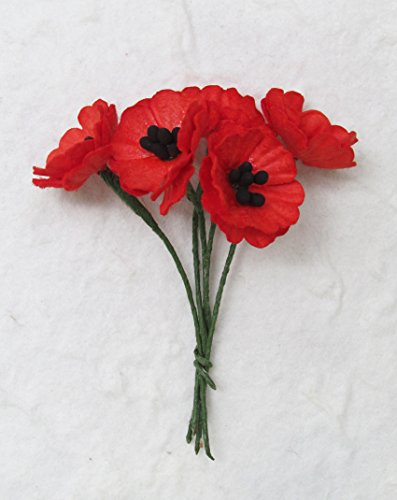 20 pcs Red Poppy Mulberry Paper Flower 20-25 mm scrapbooking wedding doll house supplies card ()