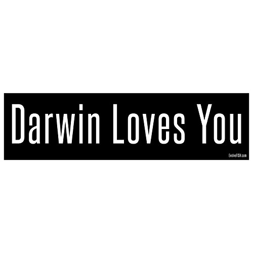 EvolveFISH Darwin Loves You Bumper Sticker 11