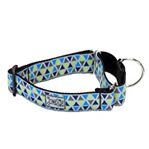 RC Pet Products 1 1/2 Inch All Webbing Martingale Dog Collar, Small, Acute