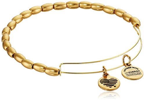 Alex Ani Bangle Expandable Bracelet
