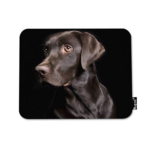 Mugod Mouse Pad Retriever Brown Dog Low Key of Chocolate Lab on Black Decor Gaming Mouse Pad Rectangle Non-Slip Rubber Mousepad for Computers Laptop 7.9x9.5 - Slip Chocolate