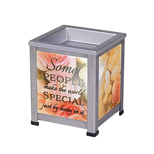 Elanze Designs Make The World Special Grey Brushed Metal Electrical Wax Tart and Oil Glass Warmer - Glass Potpourri Oil Warmer