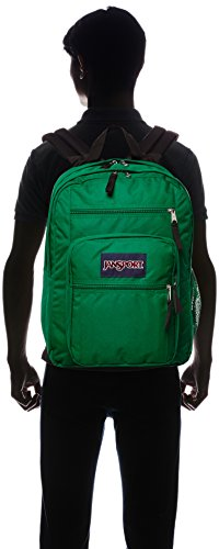 JanSport Big Student Classics Series Backpack - Amazon Green