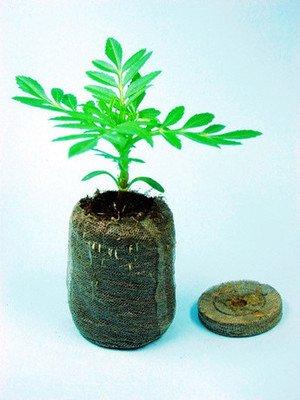 48pcs/bag Count 38mm Jiffy Peat Pellets Seed Starting Plugs,plant garden tool Seeds Starter pallet,seedling soil block