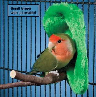 Prevue Pet Cozy Corner Fleece Bird Blanket - Medium (Green)
