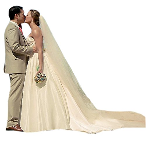 Sarahbridal Women's Soft Tulle Chapel Cathedral Bridal Veils With Comb Long Wedding Veil 3M Champagne