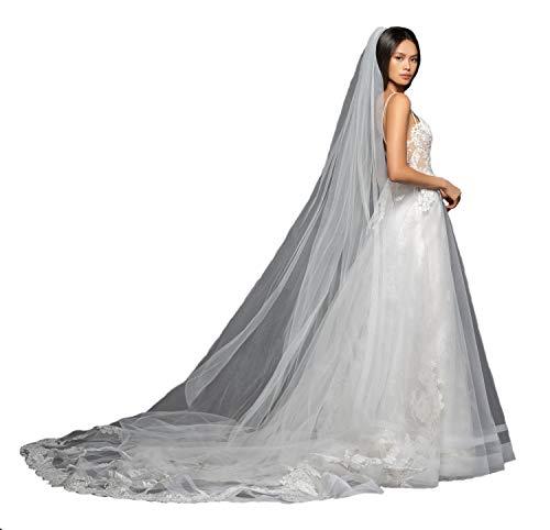 - Passat 1Tier 3M Cathedral veils ivory Silver Alencon lace appliqued lace veils for brides L854