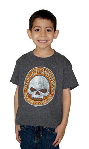 Harley-Davidson Boys Youth Demolition Willie G Skull Charcoal Short Sleeve T-Shirt -2T/3T (Toddler Boy Harley Davidson)