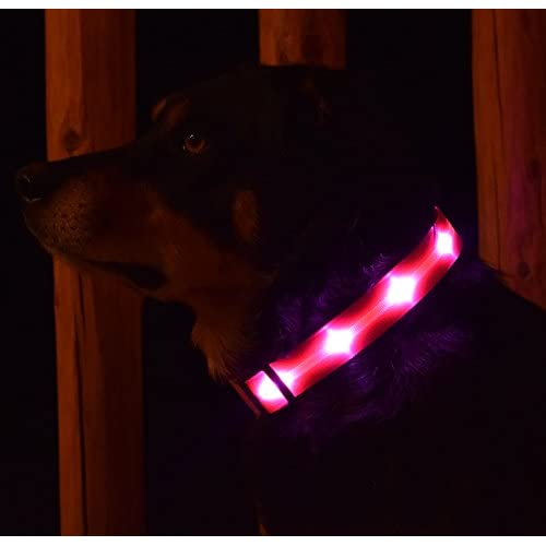 good Premium LED Dog Collar By Yippr - USB Rechargeable Led Lighted Dog Collar With 4 Settings - Increase Visibility, Safety Collar, Night Use with Ultra Bright Blinking, Light Up Nylon Flashing Pet Collar