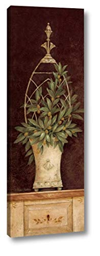 - Olive Topiary II by Pamela Gladding - 13