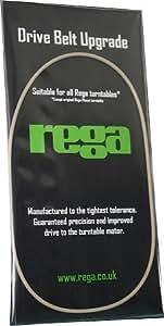Rega - Correa de transmisión para tocadiscos, color blanco