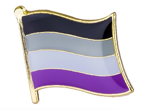 - Gay & Lesbian Pride Rainbow LGBT LGBTQ Flag Lapel Pin (Asexual) 16mm x 9.5mm