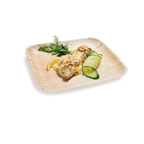 9.3-inch Eco-Friendly Indo Palm Leaf Square Plate: Perfect for Parties and Catering Events - Natural Color - Disposable Biodegradable Party Plates - 100-CT - Restaurantware ()