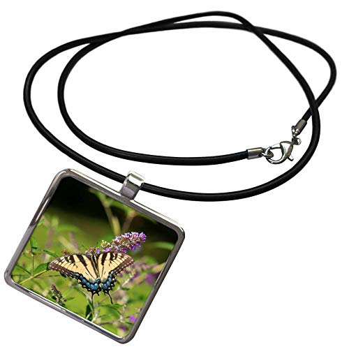 3dRose Danita Delimont - Butterflies - Eastern Tiger Swallowtail on Butterfly Bush, Illinois - Necklace with Rectangle Pendant (ncl_314820_1)