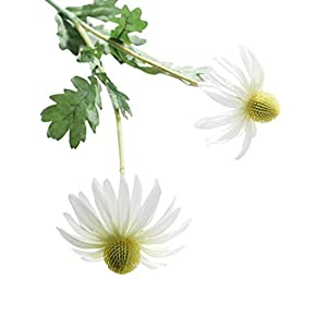 Leegor 1 Bouquet 2 Heads Real Touch Artificial Aster Chrysanthemum Fake Flowers Simulation Floral Home Wedding Decor Hotel Party Event Decorations Photography Show Props (white) 11
