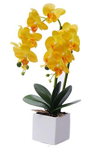 GXLMII Artificial Orchid Plant Bonsai with Vase Decorative, Lifelike Phalaenopsis Flower Arrangement Table Home Centerpiece Decor