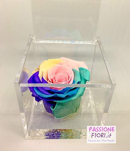 Cubo Rosa Stabilizzata Multicolor chiara 8x8x8 -Passionefiori.it il Cubo con rosa è una vera e propria Rosa che dura 5 anni - fiore conosciuto anche come Rosa eterna Rossa, non ha bisogno di acqua ne luce. Premium-Rose.com