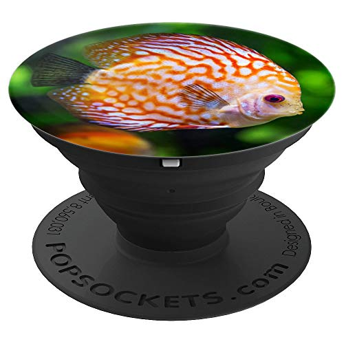 - Colorful Fresh Water Amazon River Discus Fish Lover Gift - PopSockets Grip and Stand for Phones and Tablets