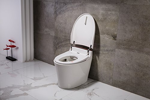 Dyconn Faucet Aphrodite Tankless All In One Combo Bidet Smart Toilet