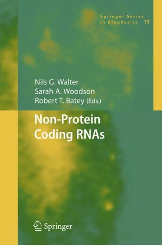 Non-Protein Coding RNAs (Springer Series in Biophysics)