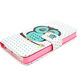 LIMME ships in 48 hours Pretty Owl Printing Design Full Body Case with Stand and Card Slot and Money Holder for iPhone 5/5S