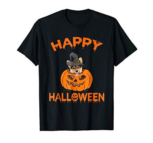 Corgis In Halloween Costumes (Funny Welsh Corgi in Pumpkin Halloween)