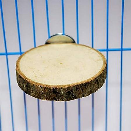 Parrot - Est - Jaula de madera redonda para pájaros y ardillas ...