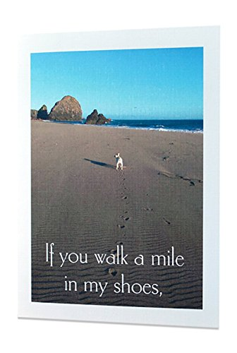 "Adult Funny Inappropriate Sexy American Greeting Cards - Any Occasions - Personalized - ""If You Walk a Mile In My Shoes"" - All Occasions - Excellent Quality Printing + 100% Linen"