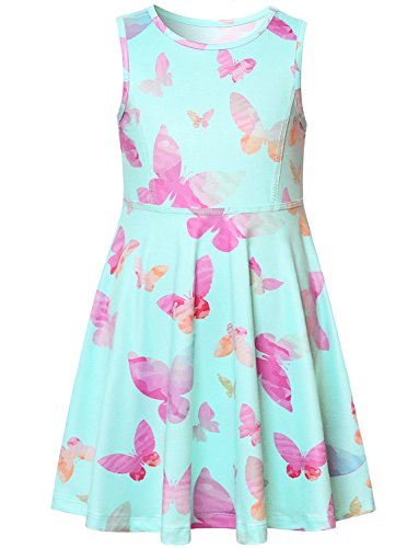 Flower Girl Dress Summer Kid Blue Butterfly Sun Floral Dress Sleeveless Casual