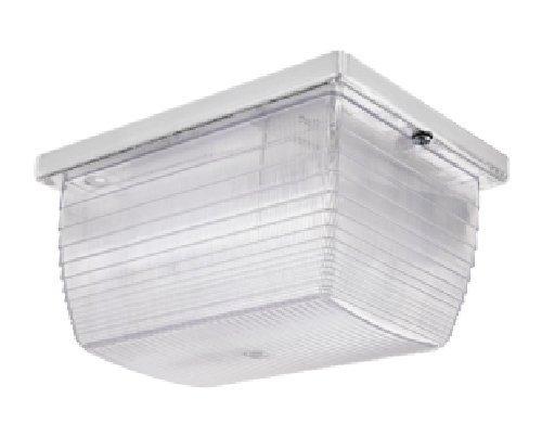 RAB Lighting VAN1F13W Vandalproof 6 by 8 Ceiling 13-Watt Fl 120-Volt, White Color Lens