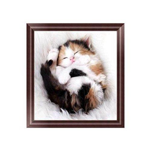 - EA-STONE Sleeping Cat 5D DIY Diamond Painting,Cross Stitch Kit,Crystals Embroidery Kits Arts Home Decor Craft (11.81