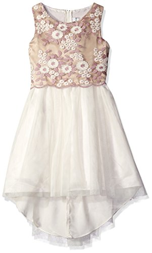 Rare Editions White Dress (Rare Editions Big Girls' Embroidered Popover Social Dress, Ivory/Purple, 14)