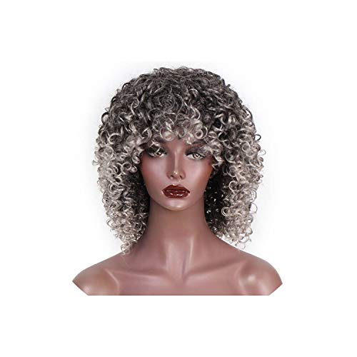 (Afro Curly Wig Synthetic Wigs for Women Black Natural Afro Hair,Silver Grey,16inches)