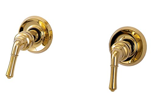 Trim Kit for 2-handle Shower Valve, Fit Delta Washerless Shower, Polished Brass Finish -By Plumb USA (Polished Brass Stem)
