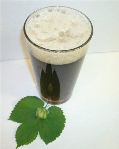 1-gallon-beer-recipe-lucky-irish-stout