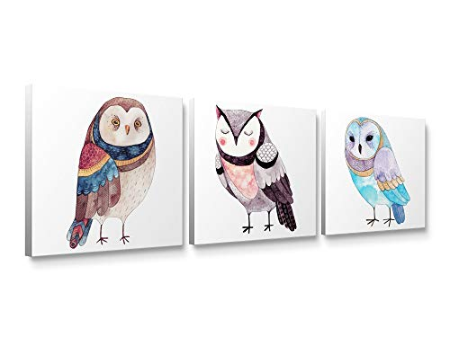 - Niwo Art-Cute Owl Combo, Bird Canvas Wall Art Home Decor,Framed Ready to Hang