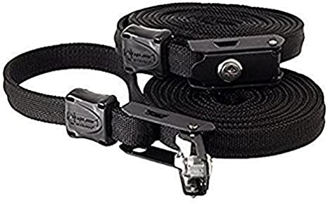 10 Black, 2 PACK Lockable Tie Down Security Lock Lashing Strap With Steel Core by LightSPEED Outdoors,