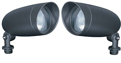 Landscape Security Lighting in US - 7